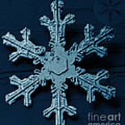 Snow Crystal Art Print