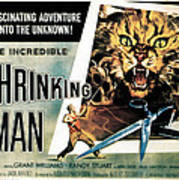 The Incredible Shrinking Man, 1957 Art Print by Everett