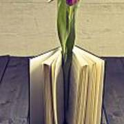 Tulip In A Book Print by Joana Kruse