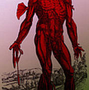 Vesalius De Humani Corporis Fabrica Art Print by Science Source