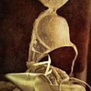 Wedding Shoes And Under Garments On Chair Art Print