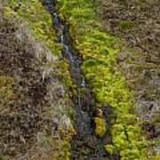 Waterfall Iceland Art Print