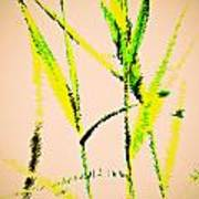 Water Reed Digital Art Art Print