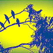 Crows Crows And Crows Art Print
