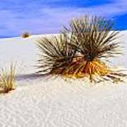 White Sands Art Print