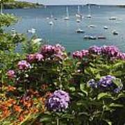 Bay Beside Glandore Village In West Art Print