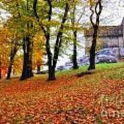 Castle In Autumn Art Print