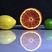 Citrus Fruits Art Print by Joana Kruse