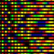 Dna Microarray Art Print