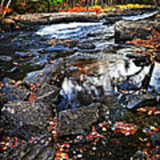 Fall Forest And River Landscape Art Print