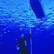 Free-diver Art Print