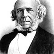 Herbert Spencer, English Polymath Print by Science Source