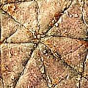 Human Skin Surface, Sem Art Print