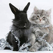 Kitten And Rabbit Getting Into Tinsel Art Print