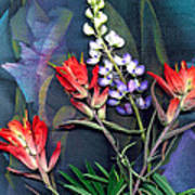 Lupin And Indian Paintbrush Art Print