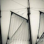 3 Sails In Monotone Of An Old Sailboat Art Print