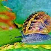 Snail On Aloe Vera Art Print
