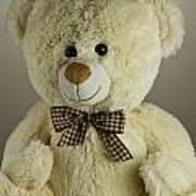 Teddy Bear Art Print by Blink Images