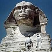 The Great Sphinx Art Print