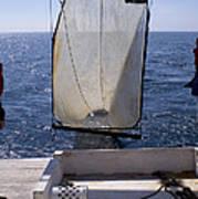 Trawling For Marine Life Art Print