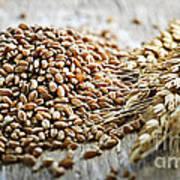 Wheat Ears And Grain Art Print