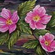 3 Wild Roses Art Print