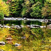 Williams River Autumn Art Print