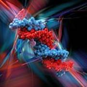 Dna Molecule, Artwork Art Print