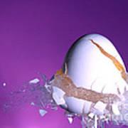 Egg Hit By A Bullet Art Print