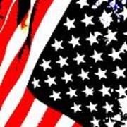 Flag Lady Art Print