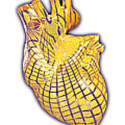 Human Heart, Artwork Art Print