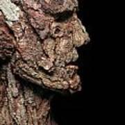 Revered  A Natural Portrait Bust Sculpture By Adam Long Art Print by Adam Long