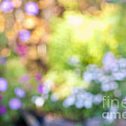 Flower Garden In Sunshine Art Print
