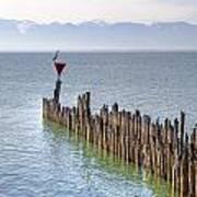 Lake Constance Art Print