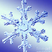 Snow Crystal Art Print