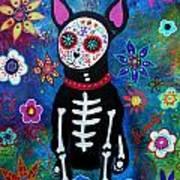 Chihuahua Dia De Los Muertos Art Print