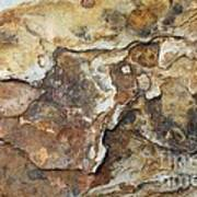Natures Rock Art Art Print