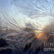 Frost On A Windowpane Art Print