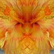 Hibiscus Mystery Art Print
