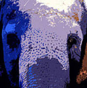 A Colorful Elephant Work Number 1 Art Print