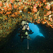 A Diver Explores A Cavern With Orange Art Print