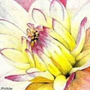 A Drop Of Yellow Art Print