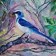 A Fine Feathered Friend Art Print