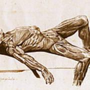 A Flayed Cadaver Art Print