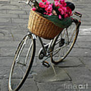 A Flower Delivery Art Print