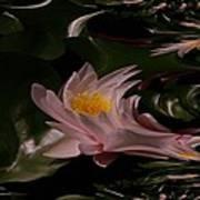 A Fractual Lily Art Print