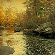 A Golden Autumn At The Unami Art Print