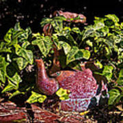A Kettle Of Greens Art Print
