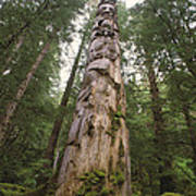 A Large Totem Pole Stands Amid Tall Art Print
