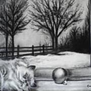 A Lazy Winter Day Art Print